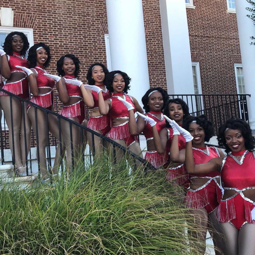 Formation: Delaware State D'Elegance Homecoming 2019 Field Show Performance